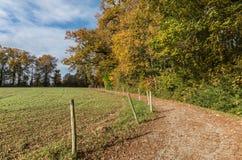 Path in the Desnerie wood. La Chapelle-sur-Erdre - France Stock Image