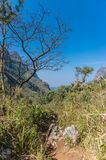 Path of Doi Luang Chiang Dao Mountain Landscape Stock Images
