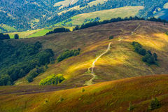 Path down the grassy hillside to valley. Path down the grassy hillside to picturesque valley. lovely warm evening on the Carpathian Borzhava ridge in late summer Stock Image