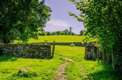 Path and dry stone wall on grazing land. Stock Photography