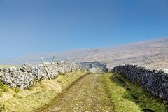 A path between drystone walls in the Yorkshire Dales. Royalty Free Stock Image