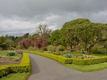 Path through Dublin botanic gardens in spring. Path through Dublin botanic gardens on a cloudy day in spring, with many different trees, some of which are stock photography