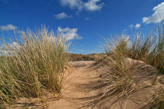 Path in the dune. Three cliff bay on the gower peninsula, south wales UK royalty free stock photography