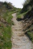 Path through the dunes Royalty Free Stock Photo