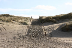 Path into the dunes. A photo of the dunes in the Netherlands stock photography