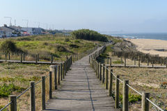 Path in the dunes Royalty Free Stock Photo