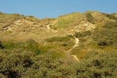 Path through the dunes along the Opal North Sea coast. Nord pas de Calais, France stock photos