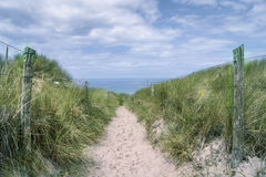 Path in the dunes at the beach Stock Images