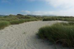 Path in dunes Stock Photo