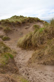 Path through dunes at the maharees Royalty Free Stock Images