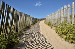 Path the dunes of Quiberon in France Royalty Free Stock Photo