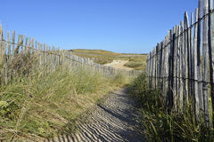 Path the dunes of Quiberon in France royalty free stock photography