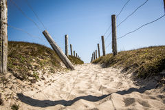 Path In The Dunes Of Quiberon In France Stock Image