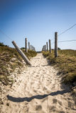 Path In The Dunes Of Quiberon In France Royalty Free Stock Image