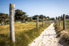 Path In The Dunes Of Quiberon In France Stock Images