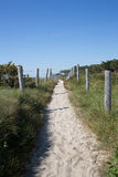 Path In The Dunes Of Quiberon In France Royalty Free Stock Photography
