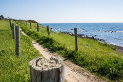 Path In The Dunes Of Quiberon In France Stock Photos