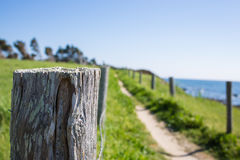 Path In The Dunes Of Quiberon In France Royalty Free Stock Images