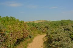 Path through dunes with shrubs on the side on the North sea Opal coast, with the city of Wimereux in the distance. Path through dunes with shrubs on the side royalty free stock image