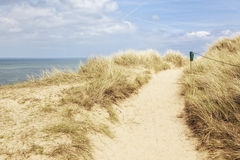 Path in the dunes of Sylt. Sylt, footpath through the dunes at Kampen Stock Photography