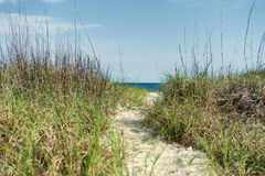 Path through dunes. To the Atlantic ocean Stock Images