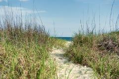Path through dunes Stock Images