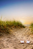 Path through dunes to beach Stock Photo