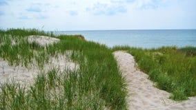 Path through the dunes Royalty Free Stock Photos