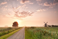 Path in Dutch farmland with windmill Royalty Free Stock Photo