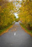 Path in early Fall in Fredericton, New Brunswick Royalty Free Stock Photo