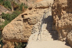 Path into the Ein Gedi Nature Reserve, Israel Royalty Free Stock Photos