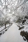 Path in the Emei Mountain in winter Stock Photos