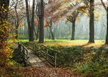 Path through enchanted autumn Park Royalty Free Stock Images
