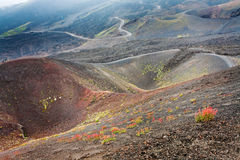 Path between Etna craters, Sicily Stock Image
