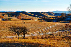 The path on fall steppe Stock Photo