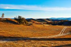 The path on fall steppe sunrise Stock Photo