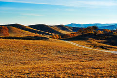 The path on fall steppe sunrise Royalty Free Stock Image