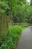 Path and fence in woods Royalty Free Stock Images