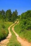 Path through field Stock Image