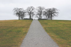 Path in field Stock Image