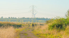 Path through a field at sunrise Stock Photography