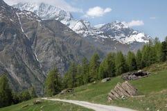 Path through fields above Zermatt Royalty Free Stock Image