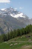 Path through fields above Zermatt Stock Photography
