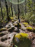Path of the fishermen in Gredos, Spain royalty free stock photography