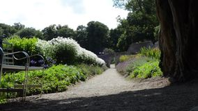 Path through flower garden with flourishing greenery leaves in breeze and a shaded seat in foreground on a sunny afternoon stock footage