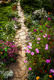 Path and flowers in garden Stock Images