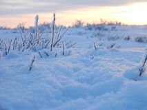 Path in the fluffy snow Royalty Free Stock Photography