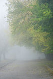 Path with fog Royalty Free Stock Images