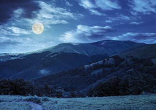Path through the forest in mountains at night Stock Image