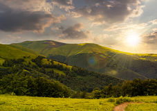 Path through the forest in mountains at sunset Stock Images